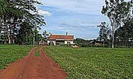 Vila Bela da Santíssima Trindade - Bei Pater Bringsken