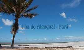 Algodoal - Ilha de Algodoal - PA