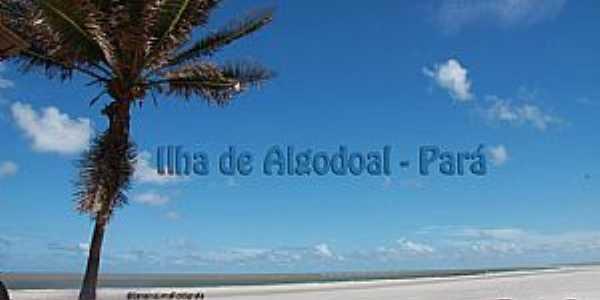 Ilha de Algodoal - PA
