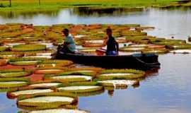Alter do Chão - Canal do Jarí. Amazonas., Por Claudio Chena