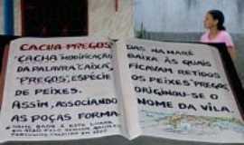Cacha Pregos -  Cacha Pregos, Por Edeilza Santos