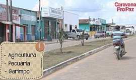 Bannach - Bannach-PA-Avenida de entrada da cidade-Foto:Agência Pará