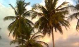Barcarena - Praia de Cuipiranga - Ilha Trambioca - Barcarena - Pará, Por Odaléia Magno