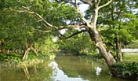 Belém - Rio Tucunduba em Belém-PA-Foto:Odilson Sá