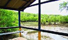 Boa Vista do Iririteua - Trapiche em Boa Vista de Iririteua-Foto:raulmoraes