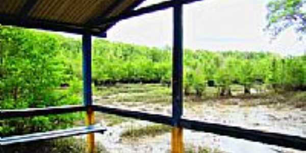 Trapiche em Boa Vista de Iririteua-Foto:raulmoraes