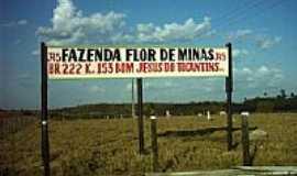 Bom Jesus do Tocantins - Fazenda Flor de Minas-Foto:Marco Antunes