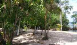 Cametá - aripijó-praia do roque, Por fatima