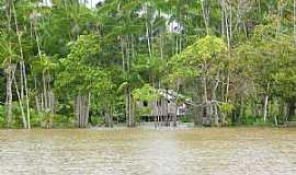 Chaves - Chaves-PA-Casa ribeirinha e a cheia do rio Coata-Foto:José Amiraldo Rabelo