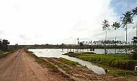 Concórdia do Pará - Concórdia do Pará-PA-Reservatório para irrigação da Plantação de Dendê-Foto:PEDRO PAULO
