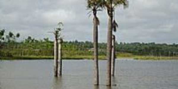 Concórdia do Pará-PA-Lago artificial reservatório-Foto:PEDRO PAULO