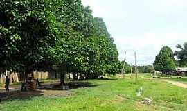 Cuiú-Cuiú - Imagens da localidade de Cuiú-Cuiú - PA