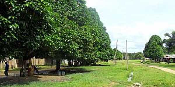 Imagens da localidade de Cuiú-Cuiú - PA