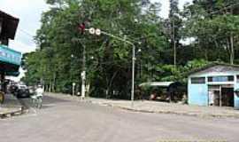 Curu�� - Curu��-PA-Bosque na Rua principal-Foto:Carlos Fernando Macedo