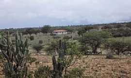 Caiçara - Caiçara-BA-Área rural do Povoado-Foto:Iba Mendes