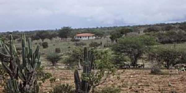 Caiçara-BA-Área rural do Povoado-Foto:Iba Mendes