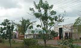 Goianésia do Pará - Canteiro Central da Avenida de entrada de Goianésia do Pará-PA-Foto:jguedesfotografia