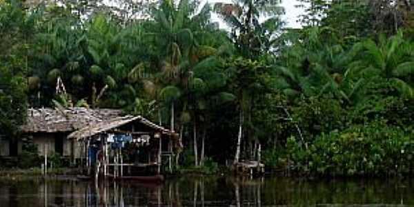 Itatupã-PA-Casas de Palafita às margens do Rio Gurupá-Foto:www.hileiaamazonica.com.br