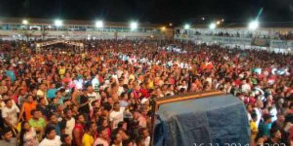 28º Festival do Açaí Limoeirense - 2014, Por AILSON SANTANA PINHEIRO