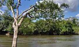 Novo Progresso - Rio Jamanxim em Novo Progresso-Foto:CICLO MANIA Novo Pro…