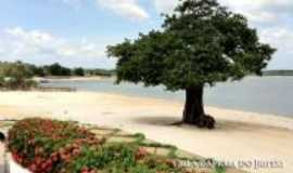 Oriximin� - Praia do Iripixi, Por Gabriel Givone