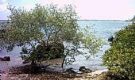 Camamu - Paraiso em Camamu-BA-Foto:Admilson Reis