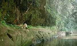 Placas - Rio Curuauna - Placas - Pará por lisvaldo César de A...