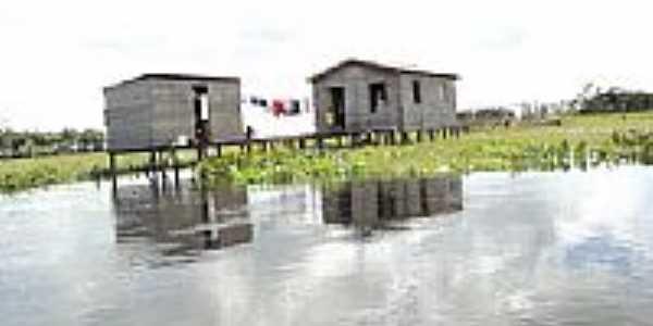 Palafitas no Rio Aquiqui em Porto de Moz-PA-Foto:Cimicidio