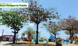 Prainha - Prainha - PA  - Por delvane silva