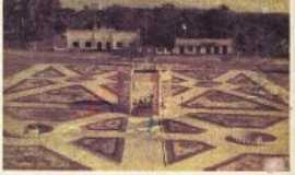 Primavera - Praça Ruti passarinho (antiga), Por MAURO AUGUSTO (MAURINHO