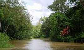 Santa Bárbara do Pará - Rio na Vila de Genipaúba-Foto:Odilson Sá