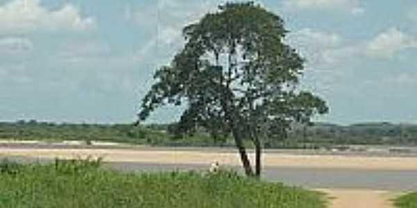 Imagem da região de Santa Maria das Barreiras-Foto:folhadecarajas.