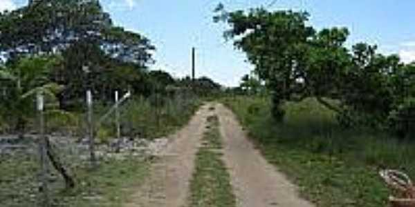 Estrada-Foto:camamu