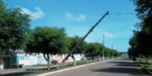 S.D.A., Por ODETE RIBEIRO
