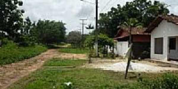 São Jorge-Foto:EdsonSilva