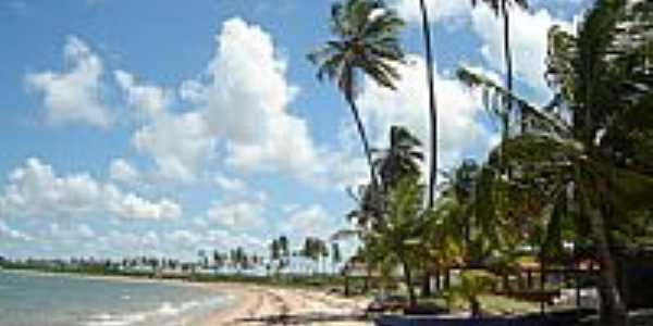 Casas na praia da Ba�a da Trai��o-Foto:Zoca