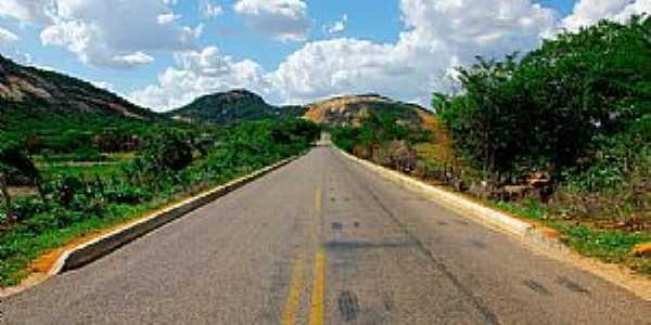 Estrada entre Patu e Belem do Brejo do Cruz por Wilson Alcaras