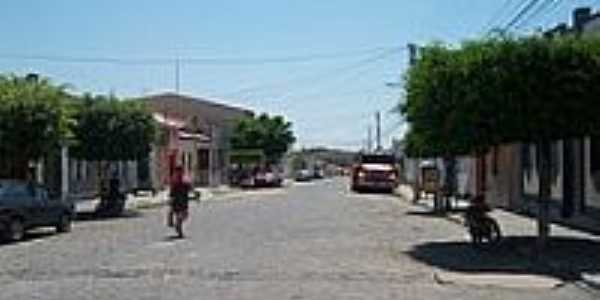 Avenida-Foto:Benelli_MAN