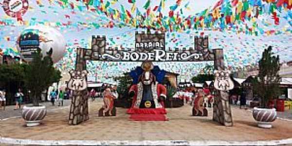 Festa do Bode Rei - Cabaceiras - PB FOTO: By Alysson Nascimento