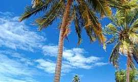 Cabedelo - Cabedelo-PB-Coqueiros na praia-Foto:Edu Jung