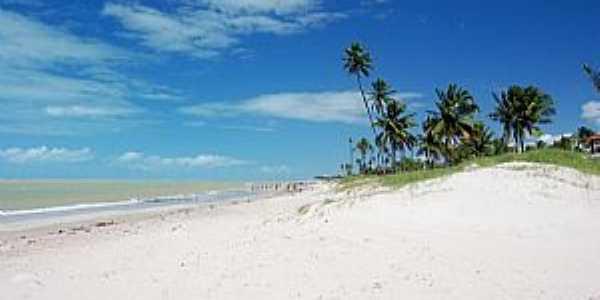 Cabedelo-PB-Coqueiros na praia-Foto:Edu Jung