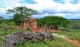 Cacimbas - Cacimbas-PB-Casinha em área rural-Foto:Rafael José Rorato