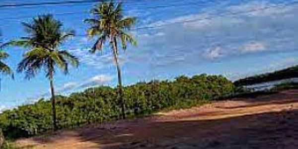 Imagens da Aldeia Camurupim no Município de Marcação-PB