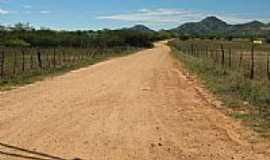 Jericó - Estrada para a cidade de Mato Grosso-Foto:JOCERLANDIO
