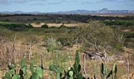 Livramento - Vista da região de Livramento-PB-Foto:marquinho33