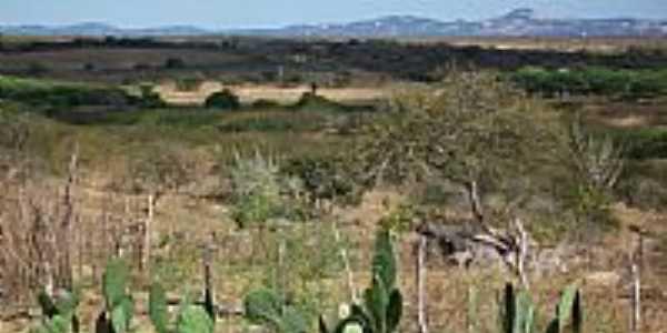 Vista da região de Livramento-PB-Foto:marquinho33
