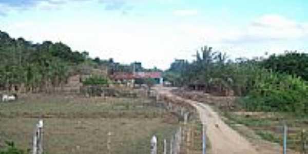 Estrada na zona rural da Vila Maia-Foto:giovanetio