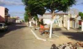 Nova Floresta - rua principal, Por gleicy oliveira