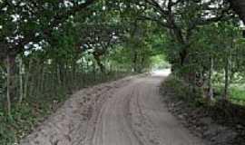 Pilar - Pilar-PB-Cajueiros contornando a estrada-Foto:Celso Mesquita