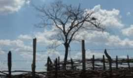 Santa Cruz - Curral-Foto:mauricelio sarmento de sousa